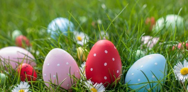 Park ridge newcomers club easter egg hunt bunny meet and greet easter egg hunt bunny meet and greet m4hsunfo